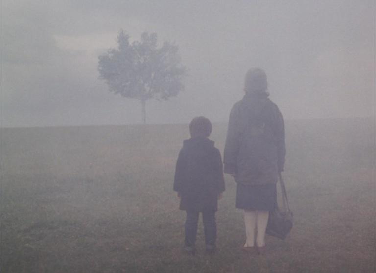 paisagem na neblina
