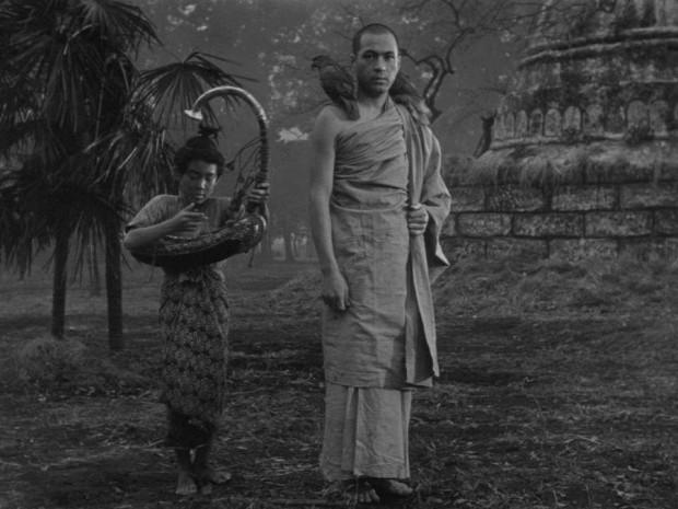 a harpa da birmania